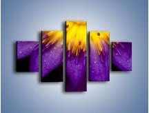 Obraz na płótnie – Baśniowy kwiat z tajemnicą – pięcioczęściowy K189W1