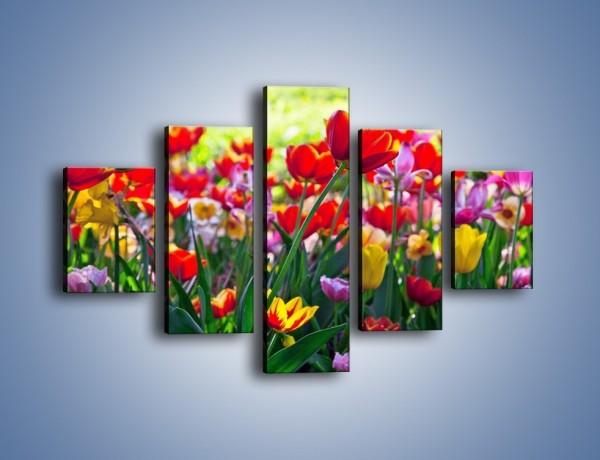 Obraz na płótnie – Odpoczynek wśród tulipanów – pięcioczęściowy K218W1