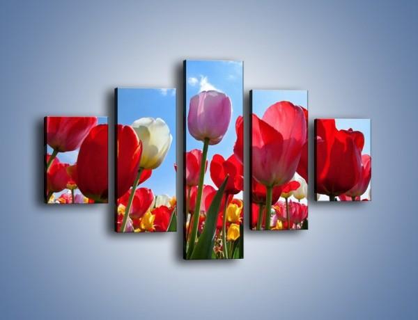Obraz na płótnie – Kolorowy zawrót głowy z tulipanami – pięcioczęściowy K221W1