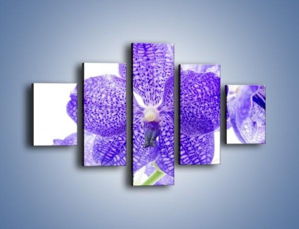 Obraz na płótnie – Jasny fiolet rządzi w kwiatach – pięcioczęściowy K259W1