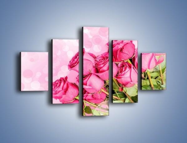 Obraz na płótnie – Słodkie bąbelkowe róże – pięcioczęściowy K261W1
