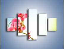 Obraz na płótnie – Akcent kwiatowy – pięcioczęściowy K268W1