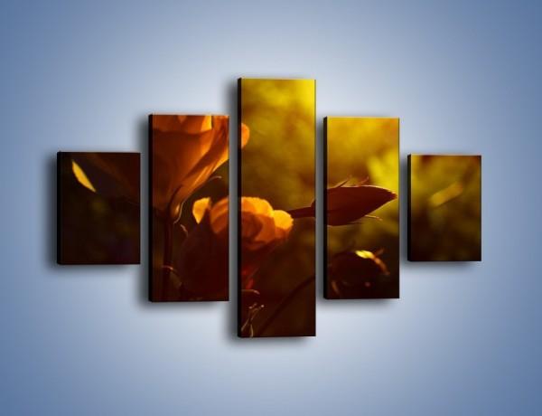 Obraz na płótnie – Wspomnienia w różanym ogrodzie – pięcioczęściowy K274W1