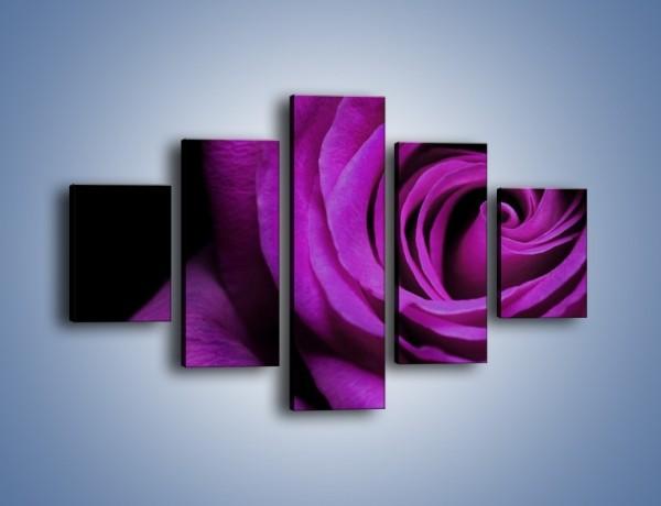 Obraz na płótnie – Tajemniczy różany fiolet – pięcioczęściowy K313W1