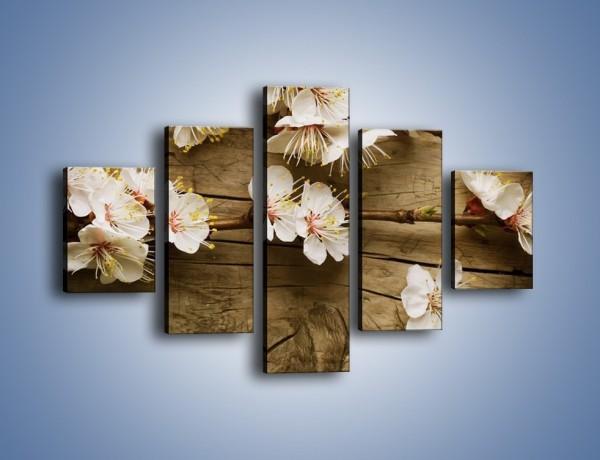 Obraz na płótnie – Kwiat jabłoni leżący na desce – pięcioczęściowy K327W1