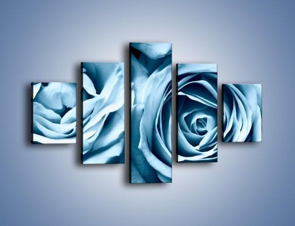 Obraz na płótnie – Nocne różane uniesienie – pięcioczęściowy K367W1