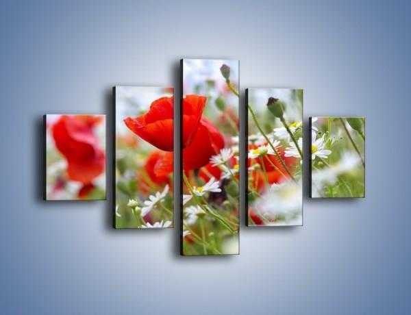 Obraz na płótnie – Polana pełna kwiatów – pięcioczęściowy K371W1