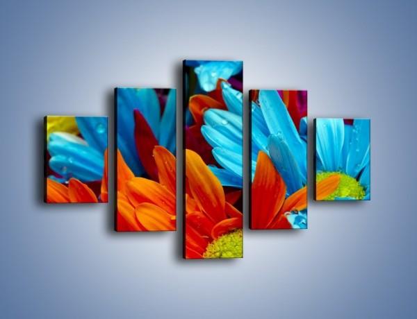 Obraz na płótnie – Kolorowo i kwiatowo – pięcioczęściowy K375W1