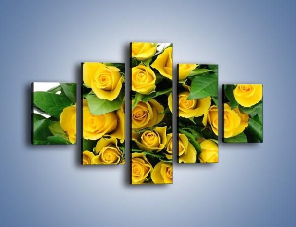Obraz na płótnie – Wiosenny uśmiech w różach – pięcioczęściowy K379W1