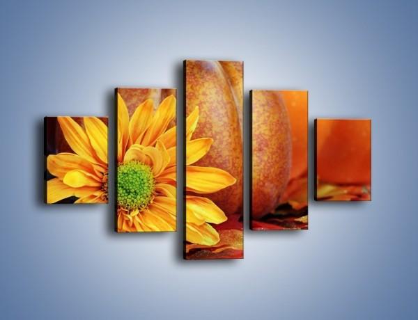 Obraz na płótnie – Dynia z kwiatem – pięcioczęściowy K386W1