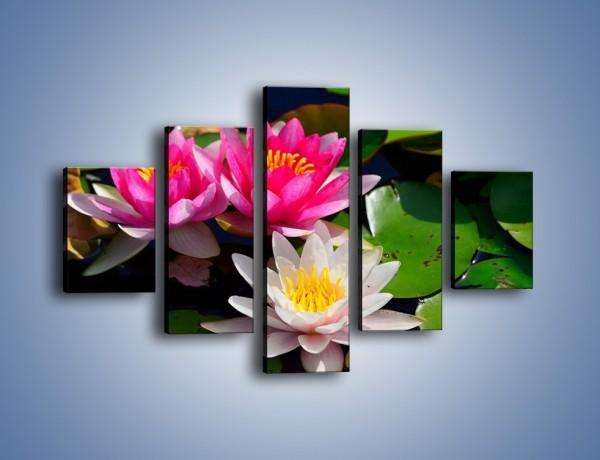 Obraz na płótnie – Pływające kwiaty – pięcioczęściowy K392W1