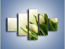 Obraz na płótnie – Białe tulipany na zgodę – pięcioczęściowy K400W1