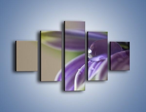 Obraz na płótnie – Kropla wody na płatku – pięcioczęściowy K402W1