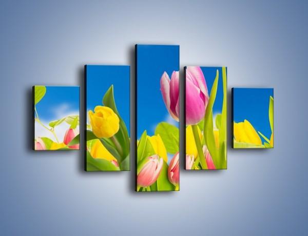Obraz na płótnie – Kolorowe tulipany w bajkowej oprawie – pięcioczęściowy K431W1