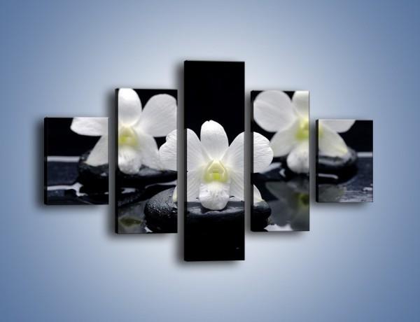Obraz na płótnie – Biel w kwiecie nocą – pięcioczęściowy K512W1