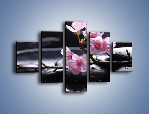 Obraz na płótnie – Gałązka kwiatowa na kamieniach – pięcioczęściowy K524W1