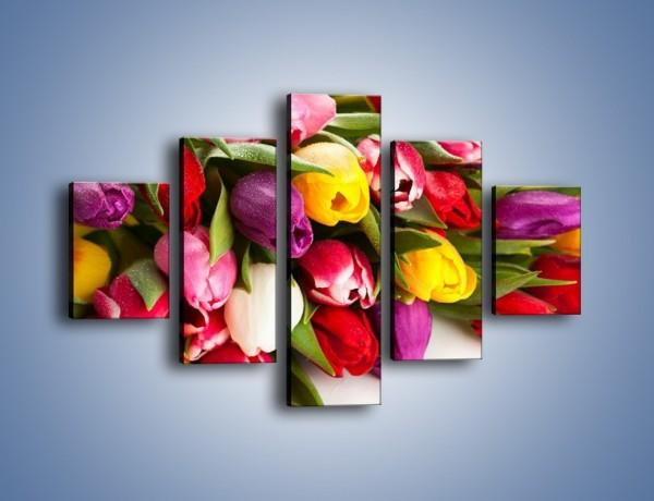 Obraz na płótnie – Spokój i luz zachowany w tulipanach – pięcioczęściowy K538W1