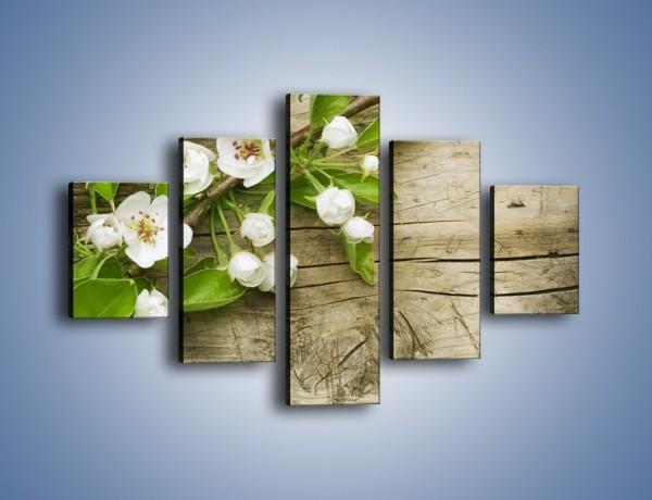 Obraz na płótnie – Złamana gałąź jabłoni – pięcioczęściowy K543W1