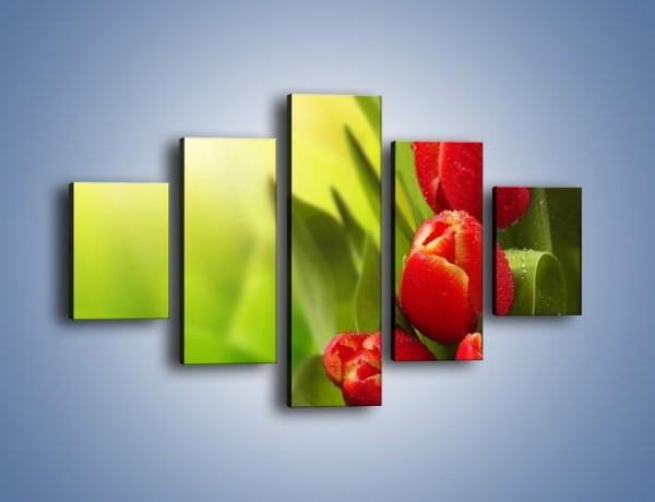 Obraz na płótnie – Liście tulipanów – pięcioczęściowy K546W1