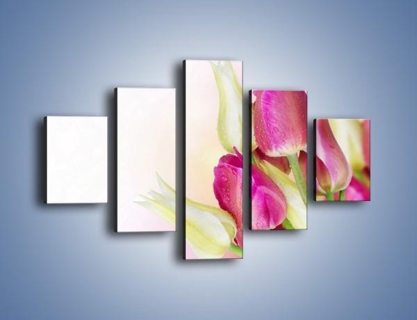 Obraz na płótnie – Kolorowa moc tulipanowa – pięcioczęściowy K549W1