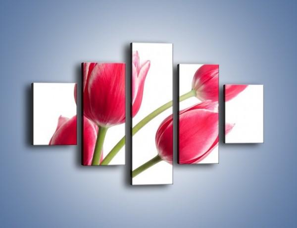 Obraz na płótnie – Pięć razy tulipany – pięcioczęściowy K551W1