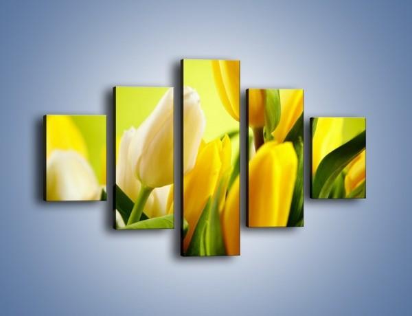 Obraz na płótnie – Żółta historia o kwiatach – pięcioczęściowy K553W1