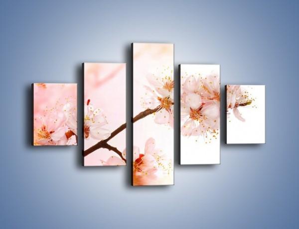 Obraz na płótnie – Blask kwiatów jabłoni – pięcioczęściowy K569W1