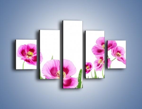 Obraz na płótnie – Maki w kolorze fioletu – pięcioczęściowy K571W1