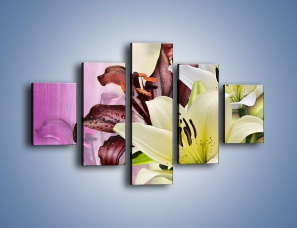 Obraz na płótnie – Podwójna twarz lilii – pięcioczęściowy K584W1