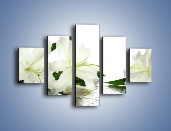 Obraz na płótnie – Czysta biel kwiatów – pięcioczęściowy K633W1