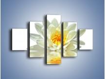 Obraz na płótnie – Biel z pomarańczą w kwiecie – pięcioczęściowy K674W1