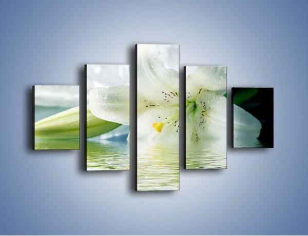 Obraz na płótnie – Czystość zachowana w lilii – pięcioczęściowy K675W1