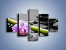 Obraz na płótnie – Bambus czy storczyk – pięcioczęściowy K686W1