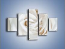 Obraz na płótnie – Biel róży za dnia – pięcioczęściowy K709W1