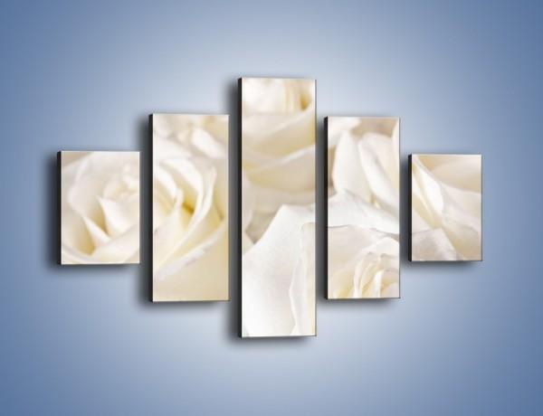 Obraz na płótnie – Dywan z białych róż – pięcioczęściowy K711W1