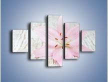 Obraz na płótnie – Cała słodycz w lilii – pięcioczęściowy K727W1