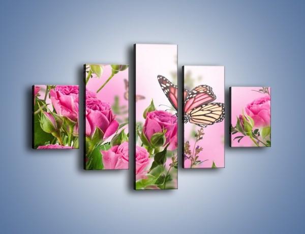 Obraz na płótnie – Motyle różowe jak kwiaty – pięcioczęściowy K741W1
