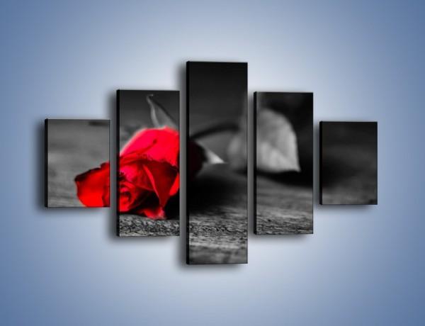 Obraz na płótnie – Tęsknota wyrażona kwiatem – pięcioczęściowy K748W1