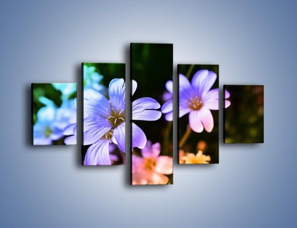 Obraz na płótnie – Niebieskie główki kwiatuszków – pięcioczęściowy K769W1