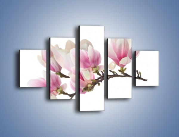 Obraz na płótnie – Rzut na gałąź magnolii – pięcioczęściowy K782W1