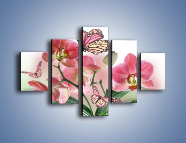 Obraz na płótnie – Różowy motyl czy kwiat – pięcioczęściowy K786W1