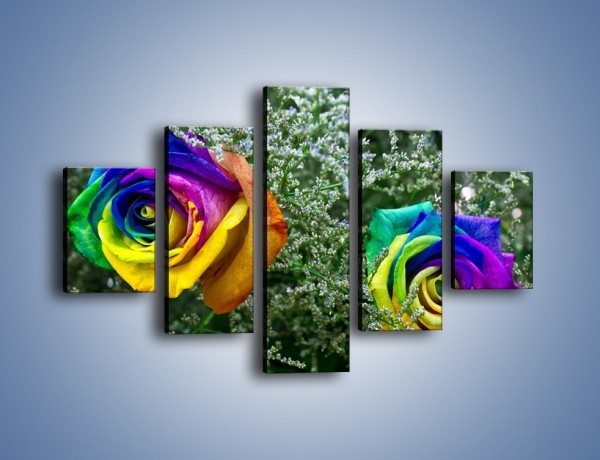 Obraz na płótnie – Kolorowe różane główki – pięcioczęściowy K800W1