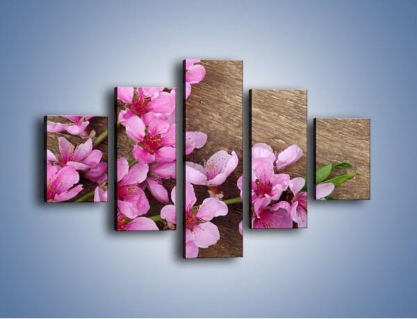 Obraz na płótnie – Kwiat wiśni z bliska – pięcioczęściowy K806W1