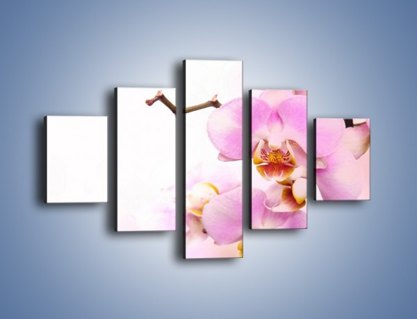Obraz na płótnie – Delikatny motyw z kwiatami – pięcioczęściowy K815W1