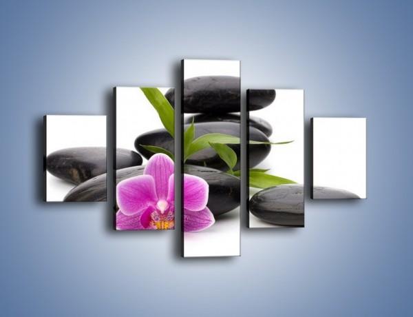 Obraz na płótnie – Surowość kwiata w naturze – pięcioczęściowy K823W1