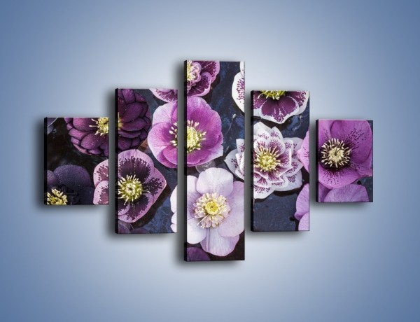 Obraz na płótnie – Wszystkie odcienie fioletu w kwiatach – pięcioczęściowy K876W1