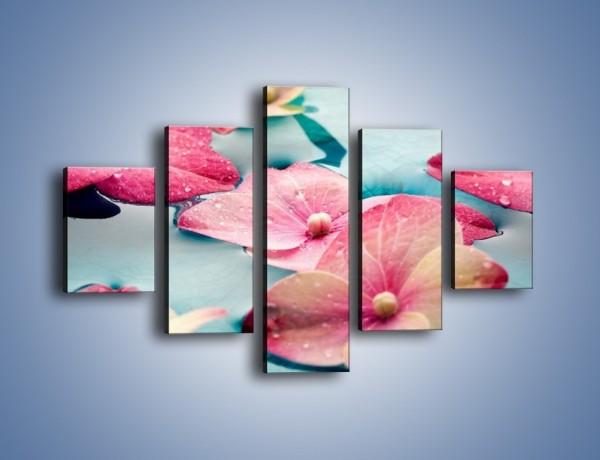 Obraz na płótnie – Głowy wodnych kwiatów – pięcioczęściowy K893W1
