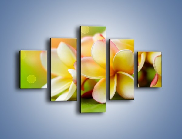 Obraz na płótnie – Kwiaty jak marcepanowe wypieki – pięcioczęściowy K898W1