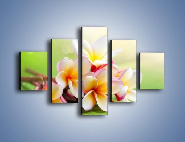 Obraz na płótnie – Nowa odmiana magnolii – pięcioczęściowy K899W1