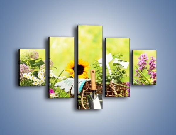 Obraz na płótnie – Sezon na działkowe kwiatki – pięcioczęściowy K917W1